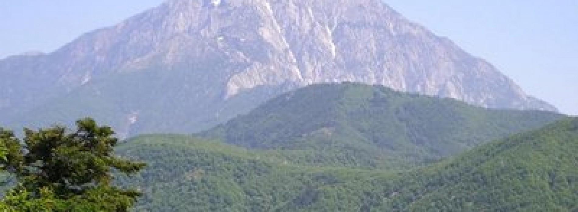 Reţetele străvechi ale călugărilor de pe Muntele Athos la Bucureşti