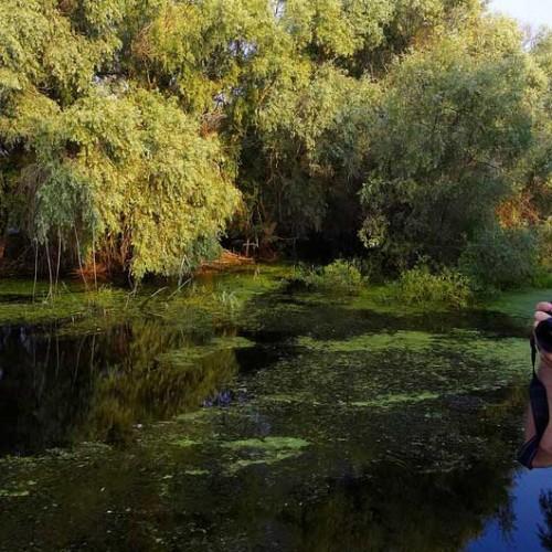 Trasee turistice in Delta