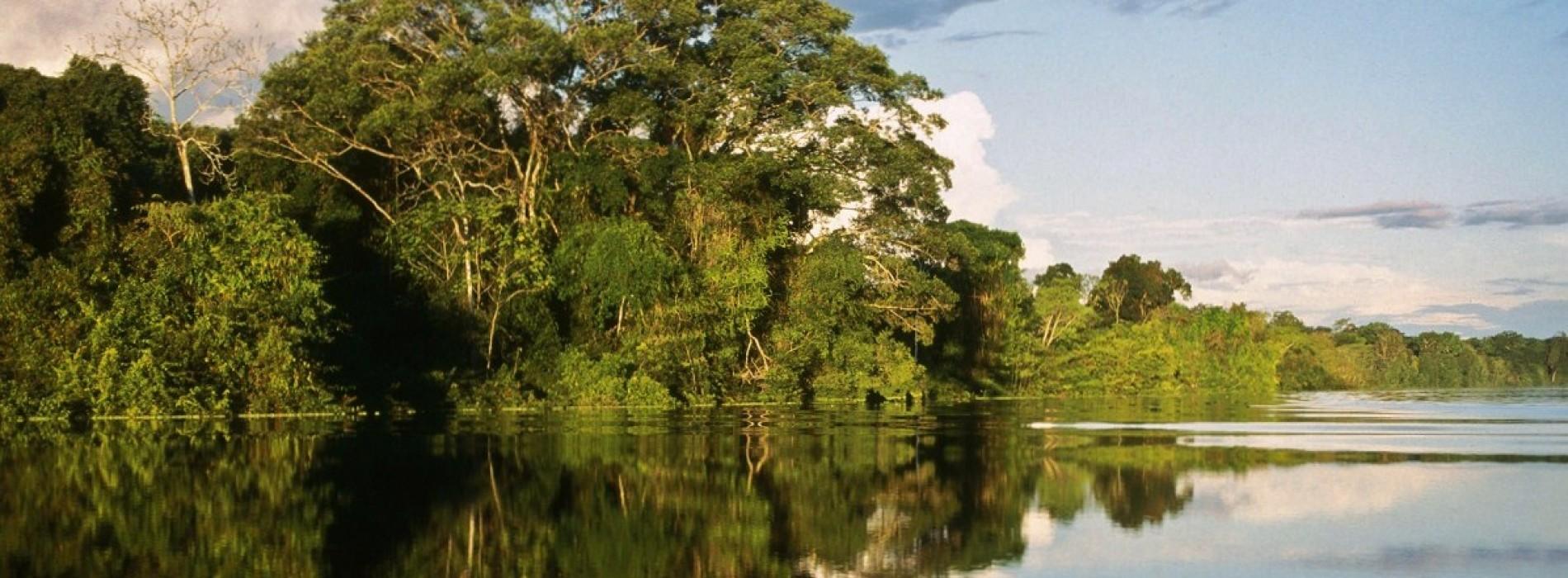 Delta, colțul de rai al pasionaților de natură