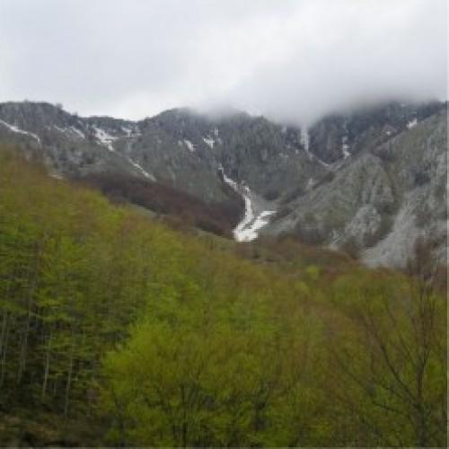 Parcul Naţional Domogled – Valea Cernei