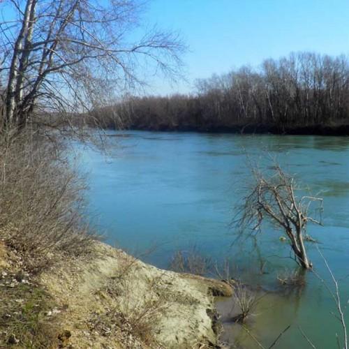 Dunărea şi braţele ei