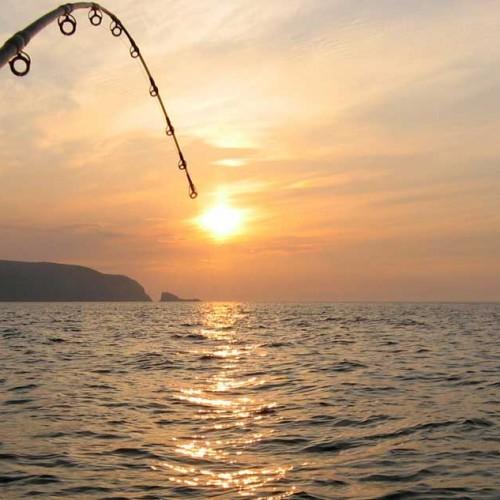 Pescuitul în Deltă