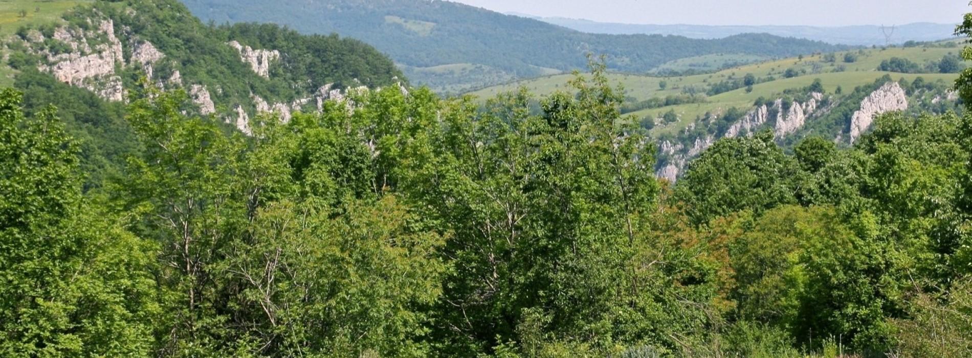 Cheile Caraşului, Parcul Naţional Semenic