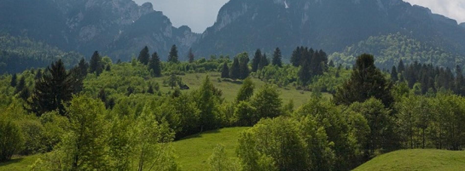 Zile pline de culori calde prin codrii montani: Parcul National Piatra Craiului