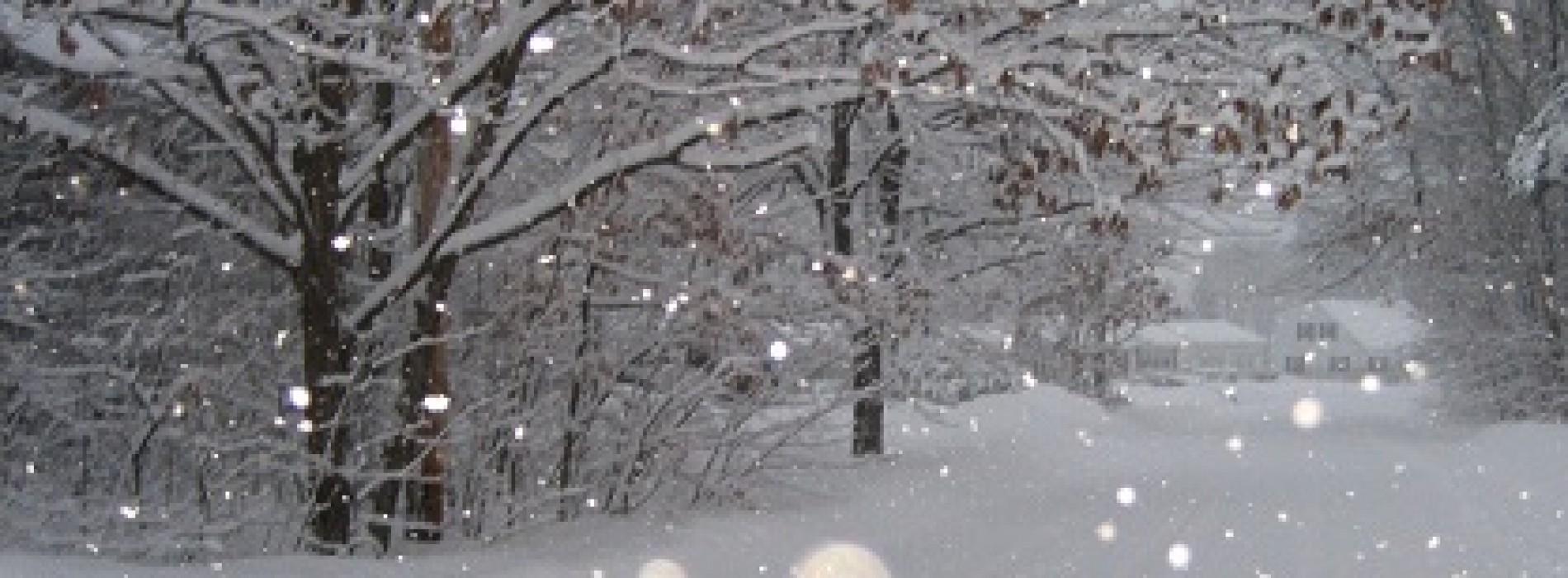 Turisti fiti atenti: ninge viscolit în Moldova, Dobrogea dar si în centrul şi estul Munteniei