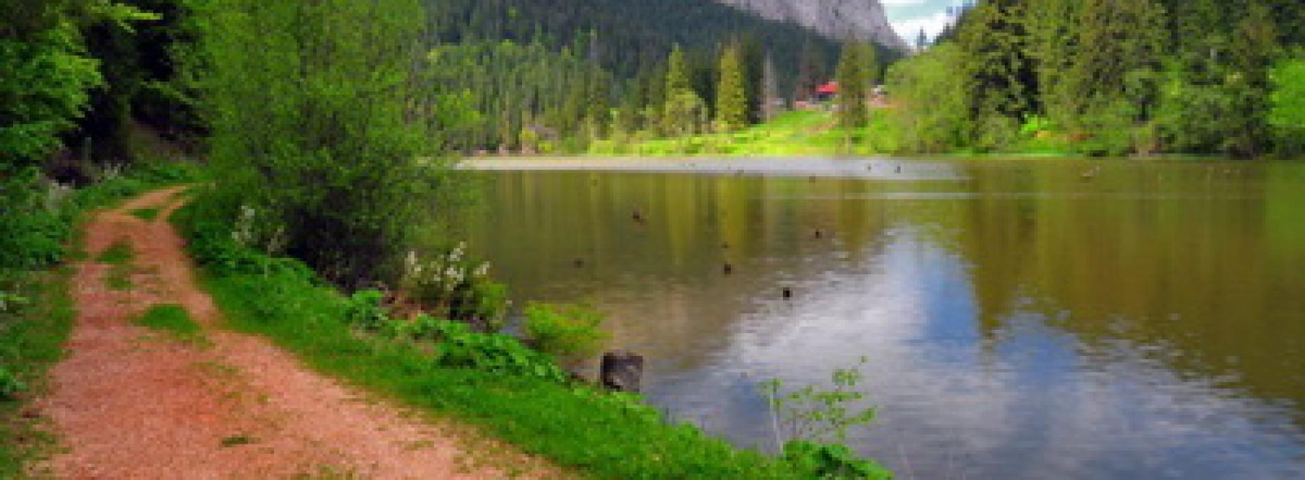 Refugiu în natură la Ziua Lacului Roșu