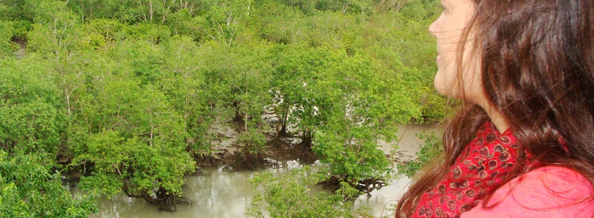 Sundarbans: tărâmul pădurii frumoase și al zeiței Bonbibi