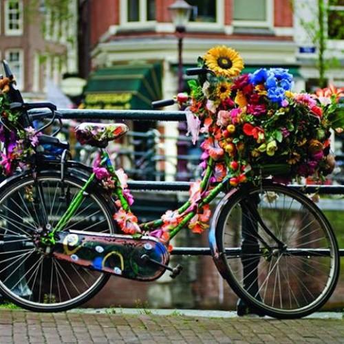 Olanda, ţara morilor de vânt şi a lalelelor