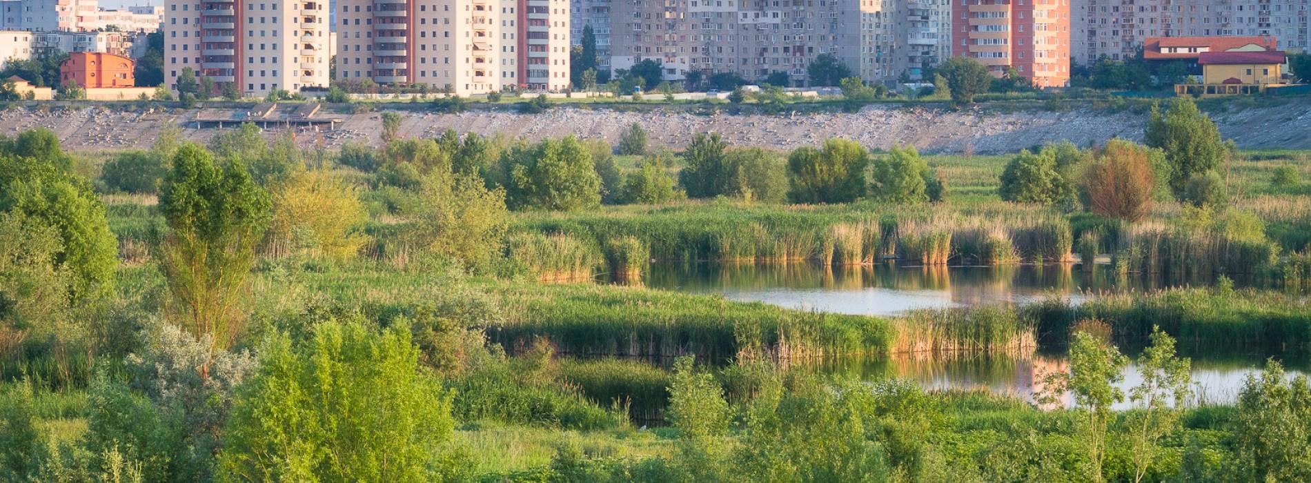 Delta Văcărești va deveni parc natural