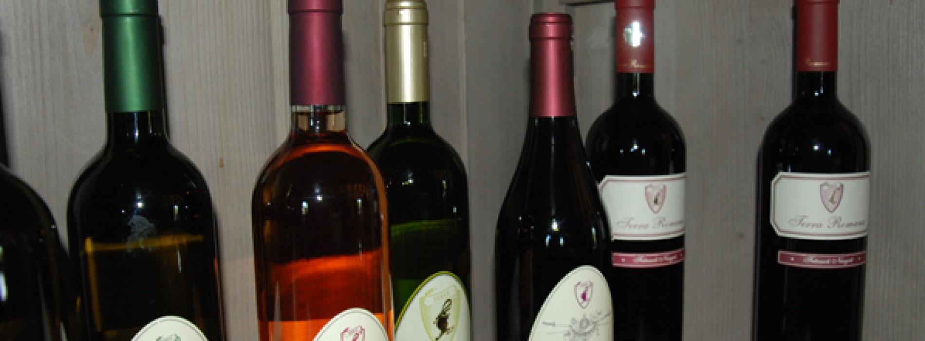 SERVE Ceptura, acolo unde vinul se face cu pasiune