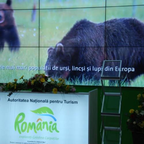 La Târgul de Turism de la Stuttgart, urșii de la Zărnești au atras turiștii