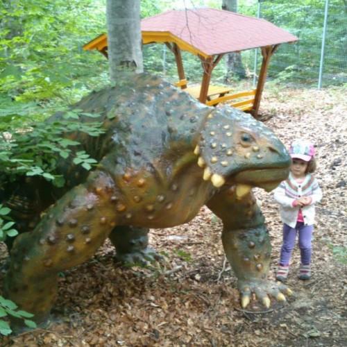 Dinozaurii au împânzit pădurea la Râșnov