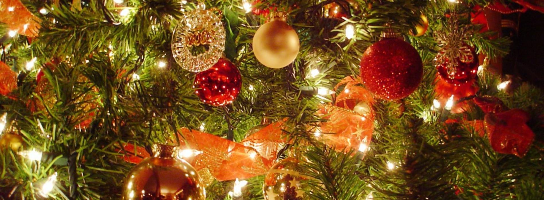 Bradul de Crăciun trebuie să ne spună o poveste!