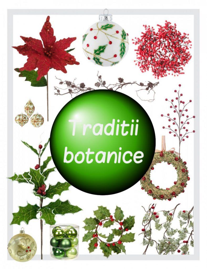traditii-botanice
