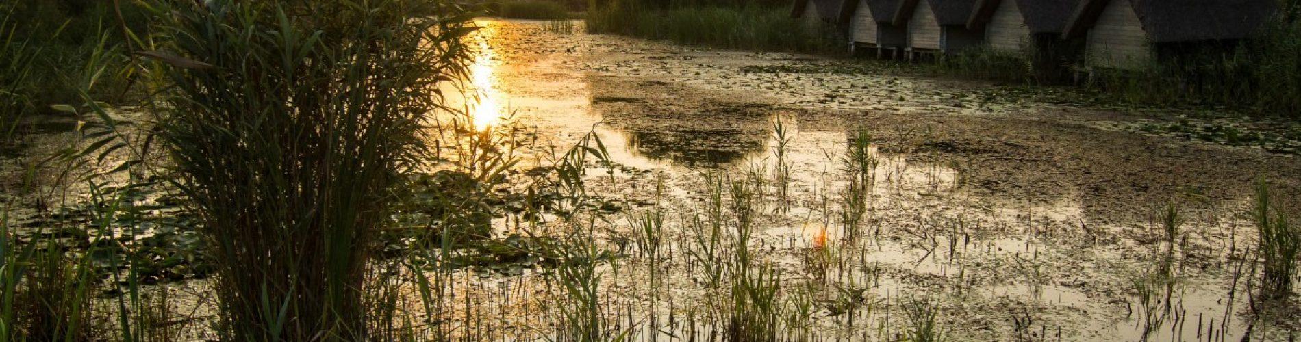 Mii de români vor, de Paște, distracție în stil pescăresc, în Delta Dunării