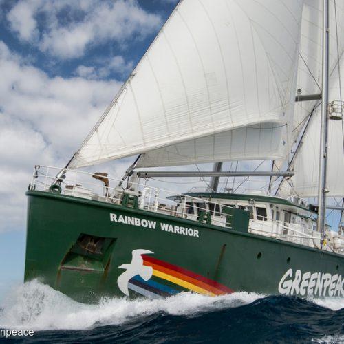 Nava-fanion a Greenpeace vine în România.  Rainbow Warrior dă alarma schimbărilor climatice